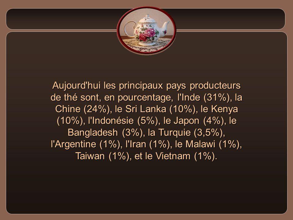 La culture du thé a fait le tour de la terre.