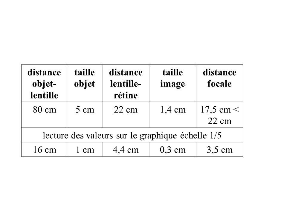 distance objet- lentille taille objet distance lentille- rétine taille image distance focale 80 cm5 cm22 cm1,4 cm17,5 cm < 22 cm lecture des valeurs s