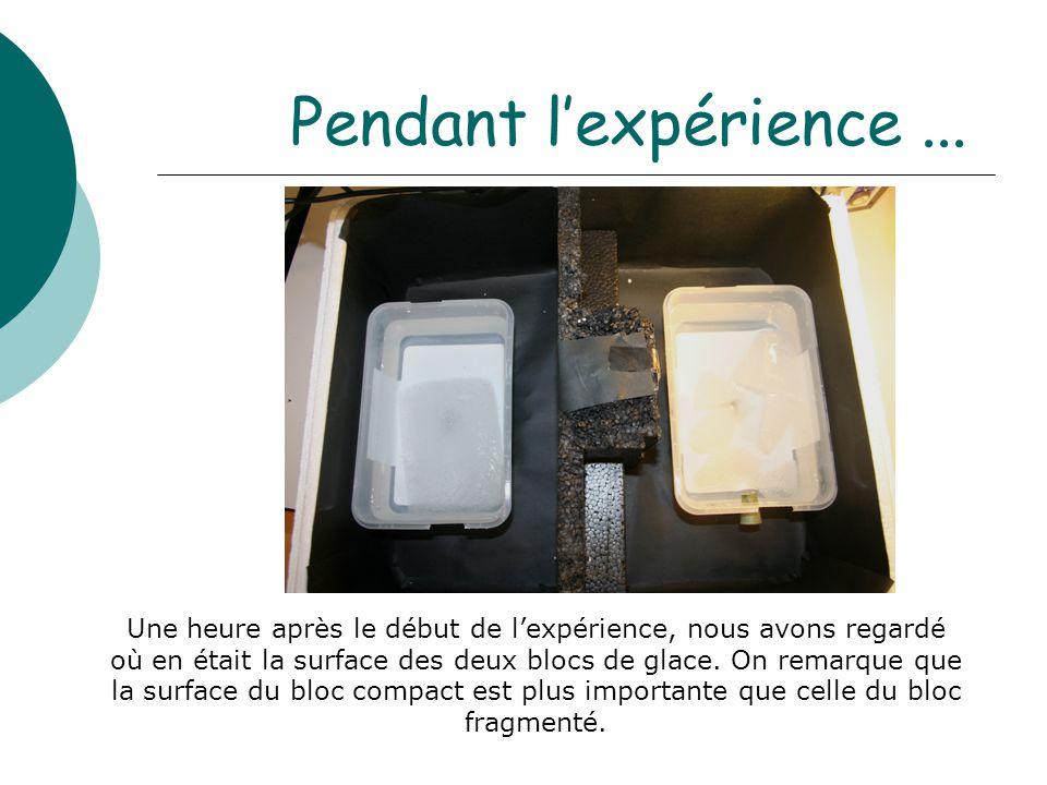 Pendant l'expérience... Une heure après le début de l'expérience, nous avons regardé où en était la surface des deux blocs de glace. On remarque que l