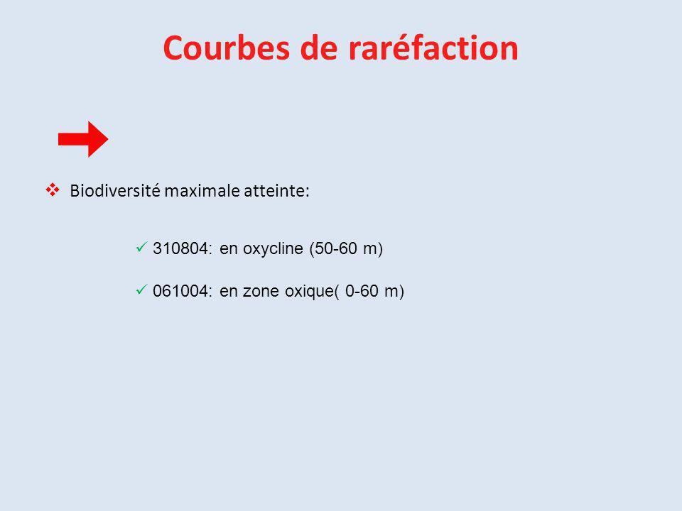 Courbes de raréfaction  Biodiversité maximale atteinte: 310804: en oxycline (50-60 m) 061004: en zone oxique( 0-60 m)