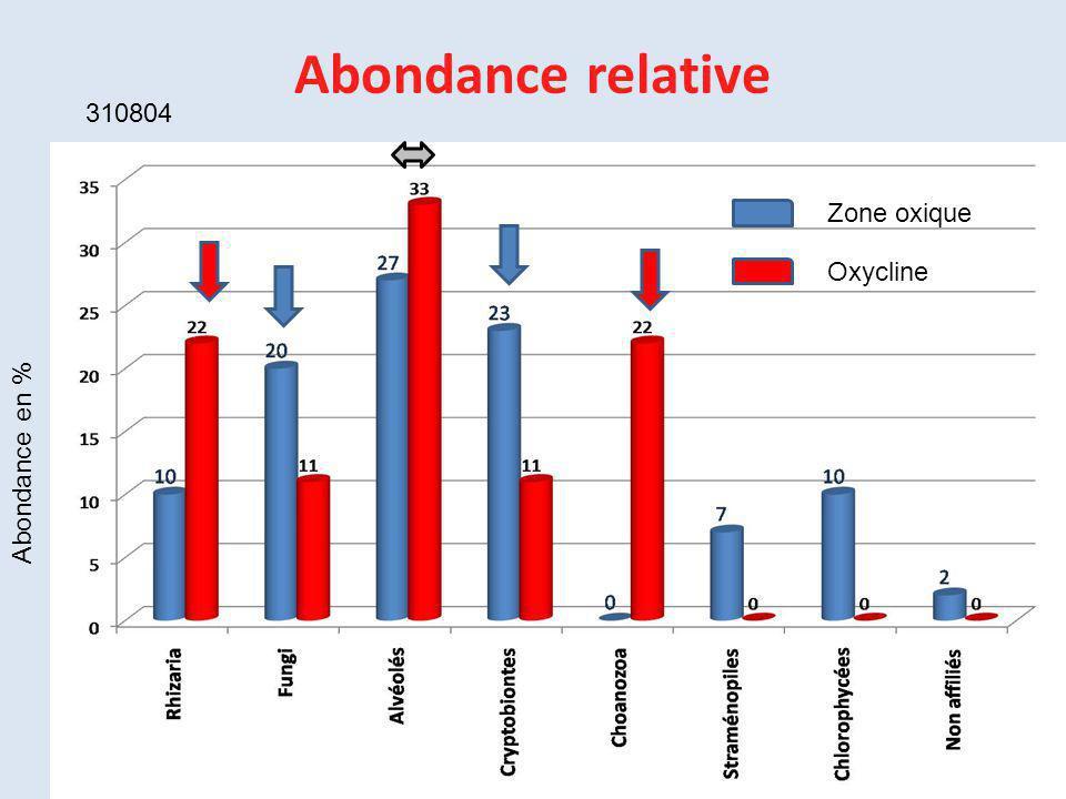Abondance relative 310804 Abondance en % Zone oxique Oxycline