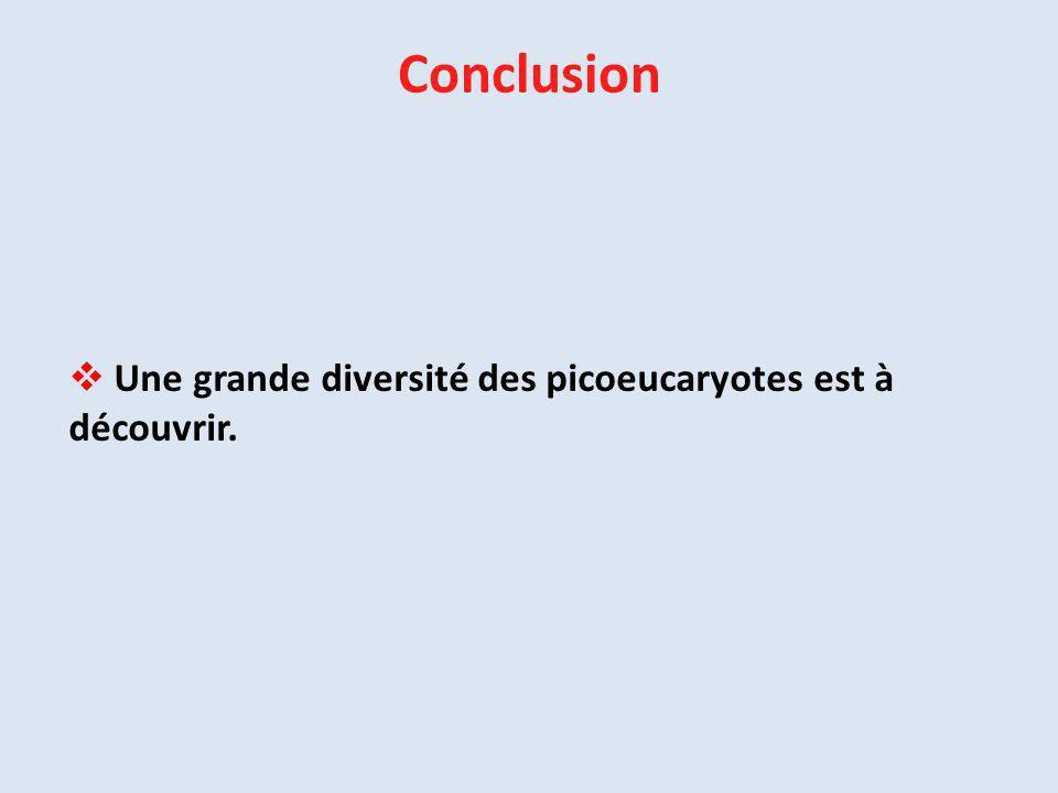  Une grande diversité des picoeucaryotes est à découvrir. Conclusion