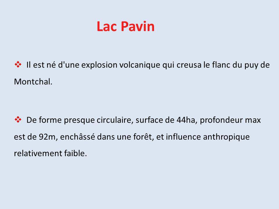  Il est né d'une explosion volcanique qui creusa le flanc du puy de Montchal.  De forme presque circulaire, surface de 44ha, profondeur max est de 9