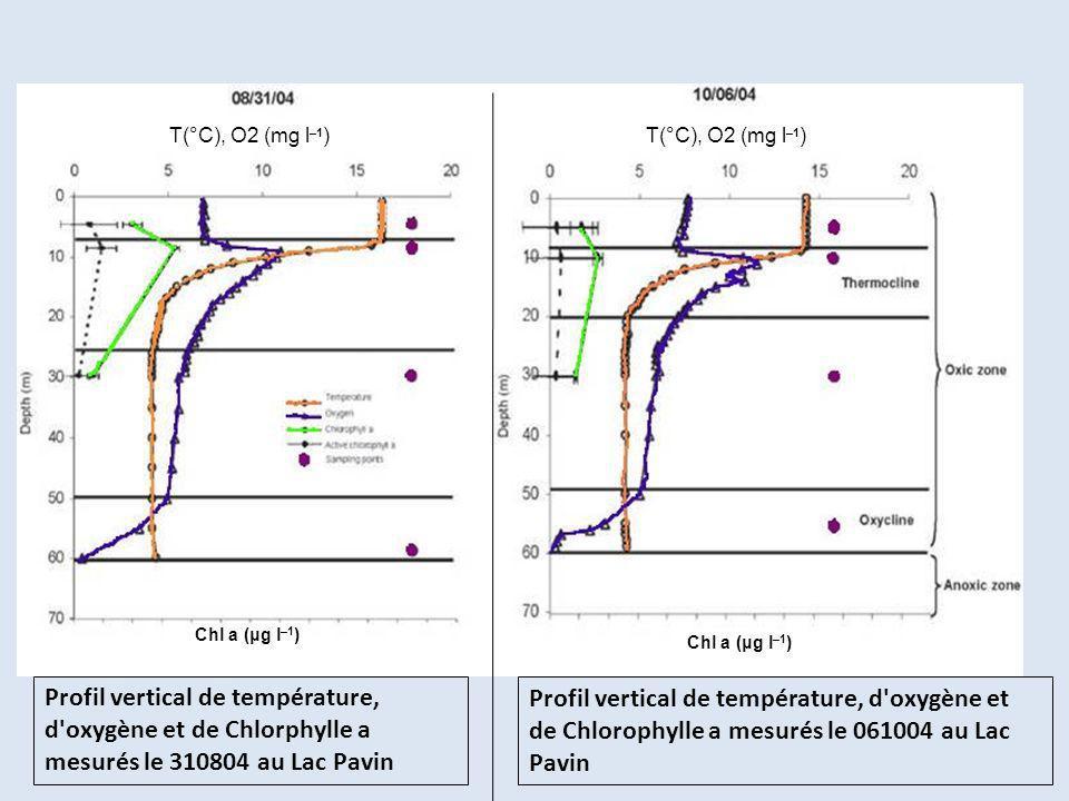 Profil vertical de température, d'oxygène et de Chlorphylle a mesurés le 310804 au Lac Pavin Profil vertical de température, d'oxygène et de Chlorophy