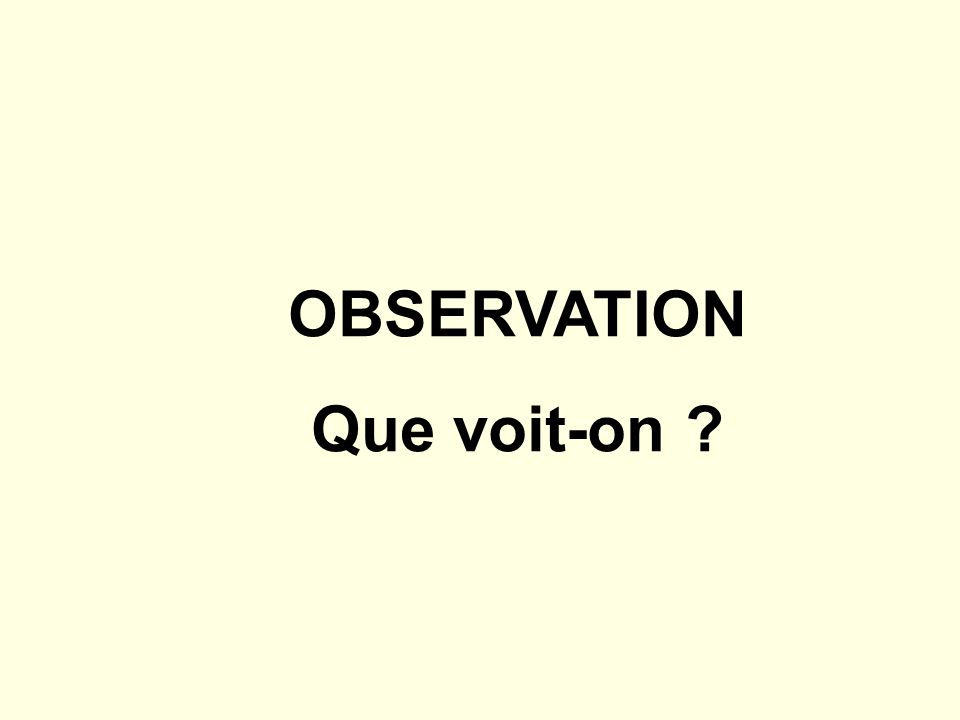 OBSERVATION Que voit-on ?