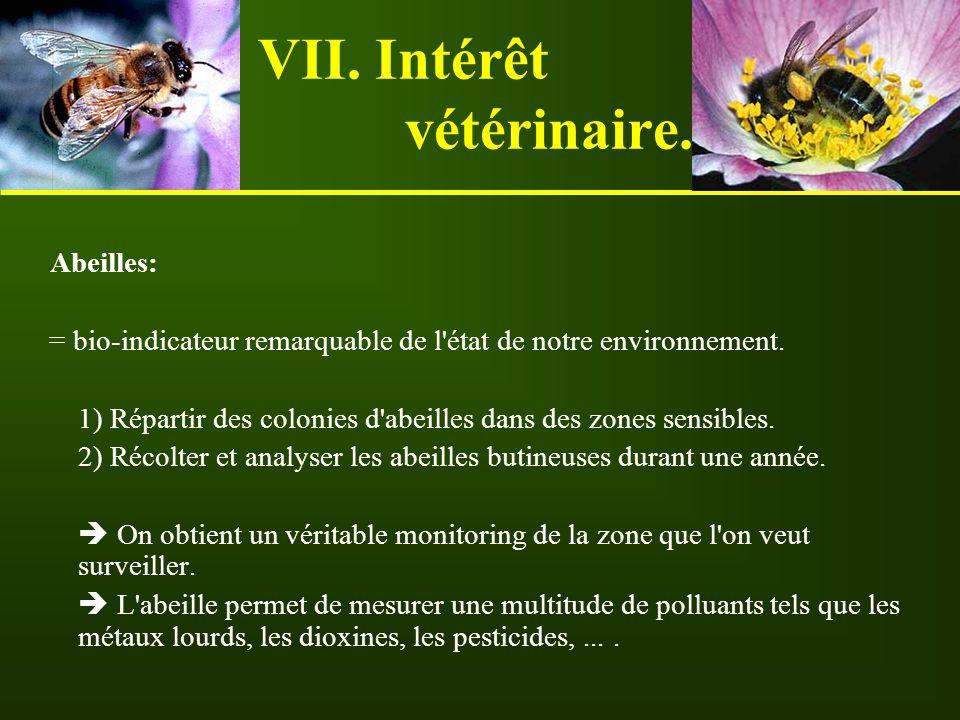 VII. Intérêt vétérinaire. Abeilles: = bio-indicateur remarquable de l'état de notre environnement. 1) Répartir des colonies d'abeilles dans des zones