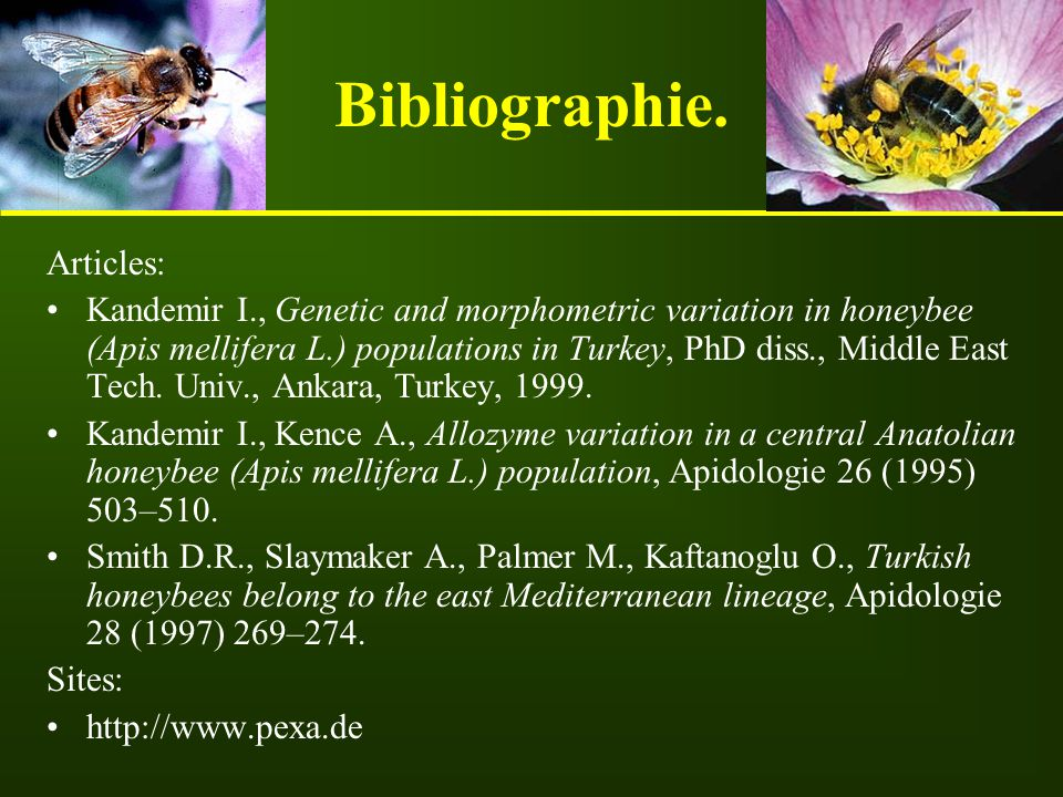Bibliographie. Articles: Kandemir I., Genetic and morphometric variation in honeybee (Apis mellifera L.) populations in Turkey, PhD diss., Middle East