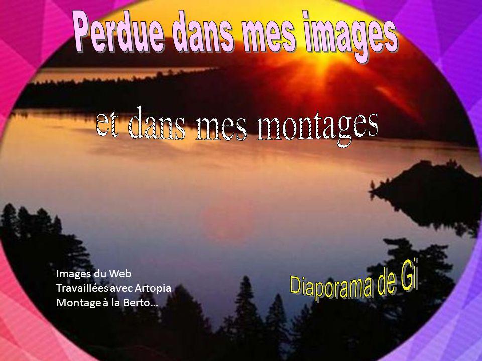 Images du Web Travaillées avec Artopia Montage à la Berto…