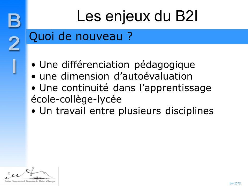 Bm 2010 Les enjeux du B2I Une différenciation pédagogique une dimension d'autoévaluation Une continuité dans l'apprentissage école-collège-lycée Un travail entre plusieurs disciplines Quoi de nouveau