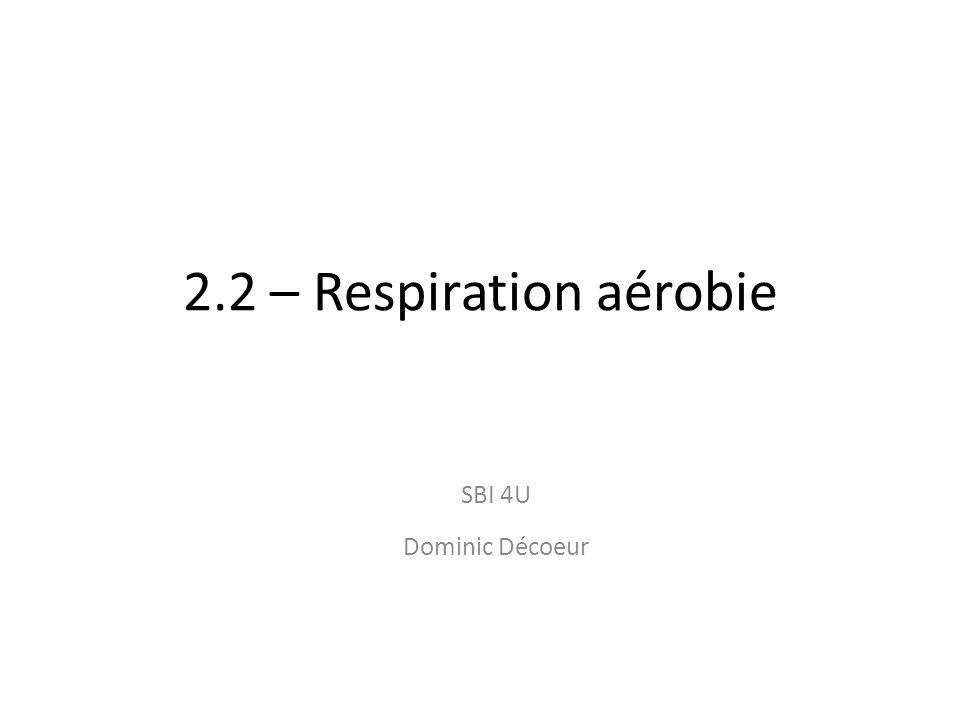 2.2 – Respiration aérobie SBI 4U Dominic Décoeur