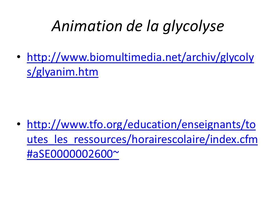 Animation de la glycolyse http://www.biomultimedia.net/archiv/glycoly s/glyanim.htm http://www.biomultimedia.net/archiv/glycoly s/glyanim.htm http://w