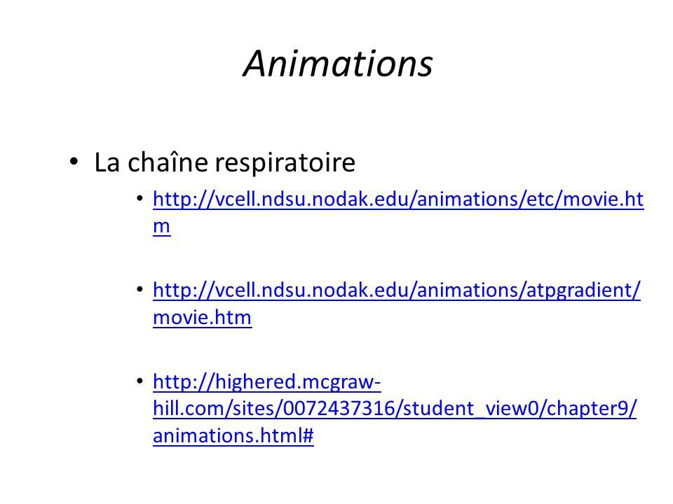 Animations La chaîne respiratoire http://vcell.ndsu.nodak.edu/animations/etc/movie.ht m http://vcell.ndsu.nodak.edu/animations/etc/movie.ht m http://v