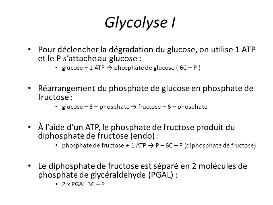 ÉtapeMolécule impliquée Nombre d'ATP Glycolyse I2 NADH4 Glycolyse II2 ATP2 Cycle de Krebs2 ATP2 Cycle de Krebs8 NADH24 Cycle de Krebs2 FADH 2 4 Bilan global