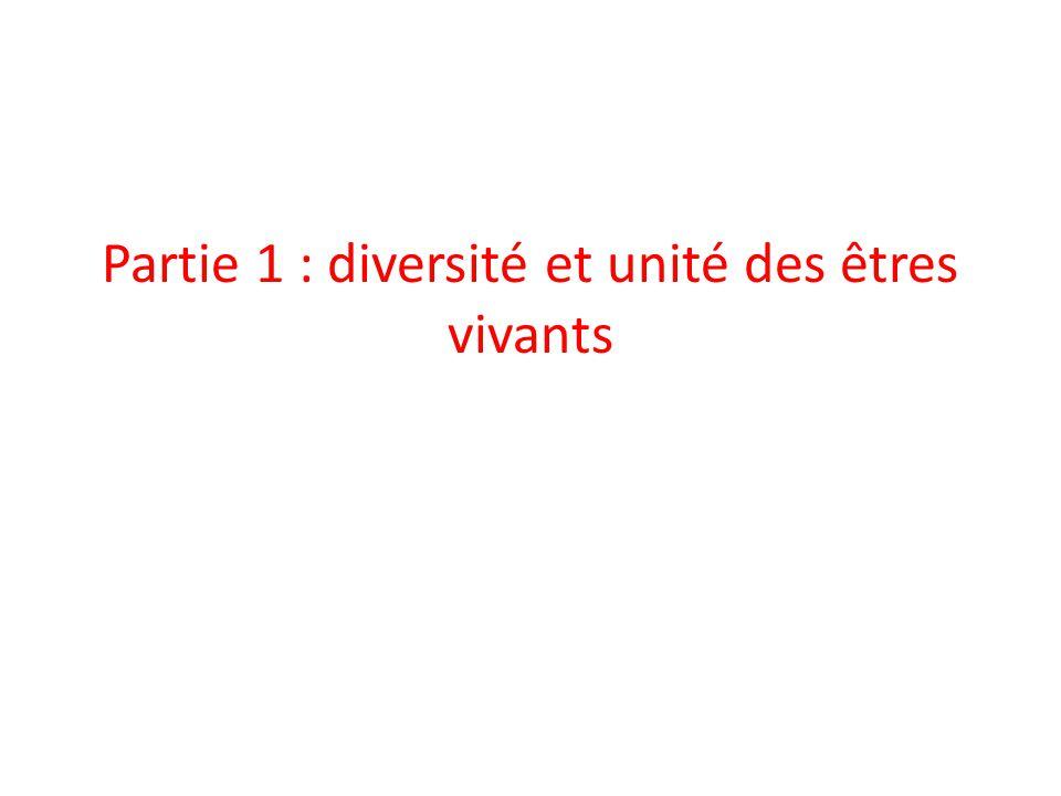 Partie 1 : diversité et unité des êtres vivants