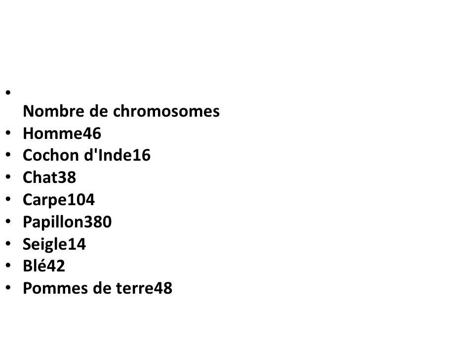 Nombre de chromosomes Homme46 Cochon d'Inde16 Chat38 Carpe104 Papillon380 Seigle14 Blé42 Pommes de terre48