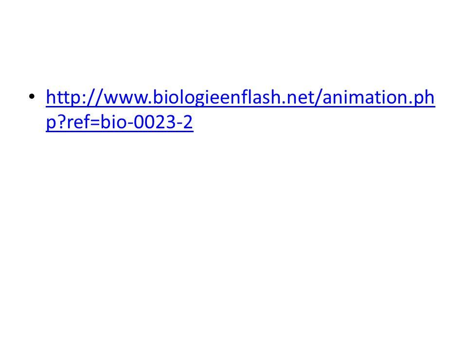 http://www.biologieenflash.net/animation.ph p?ref=bio-0023-2 http://www.biologieenflash.net/animation.ph p?ref=bio-0023-2