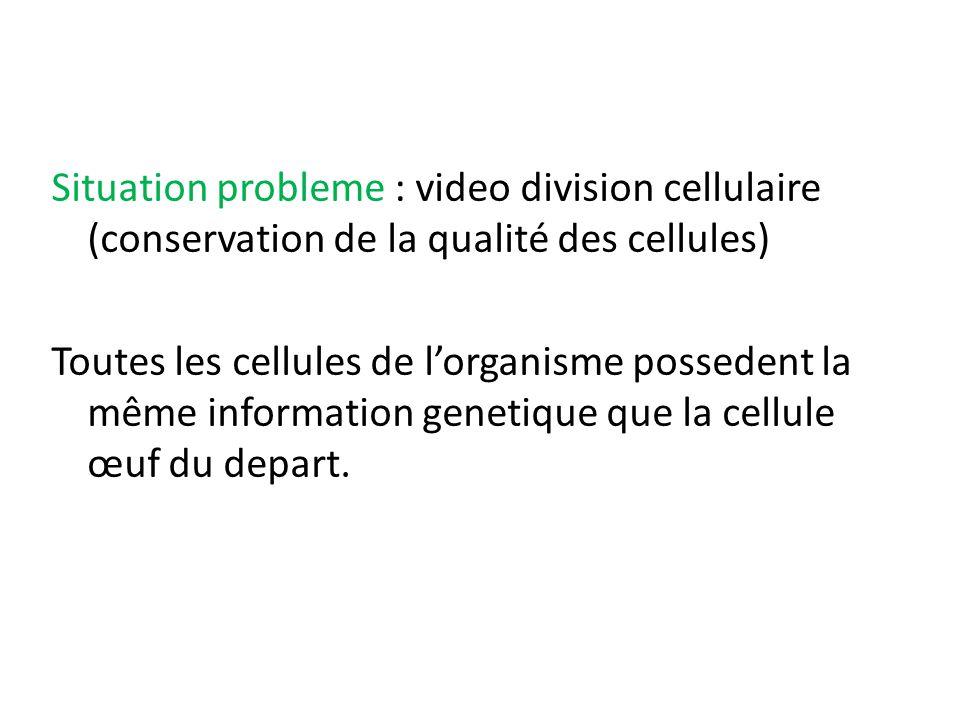 Situation probleme : video division cellulaire (conservation de la qualité des cellules) Toutes les cellules de l'organisme possedent la même informat