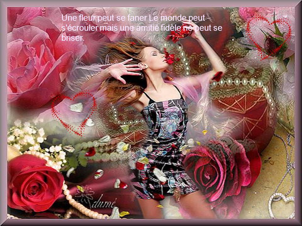 Une fleur peut se faner Le monde peut s écrouler mais une amitié fidèle ne peut se briser.