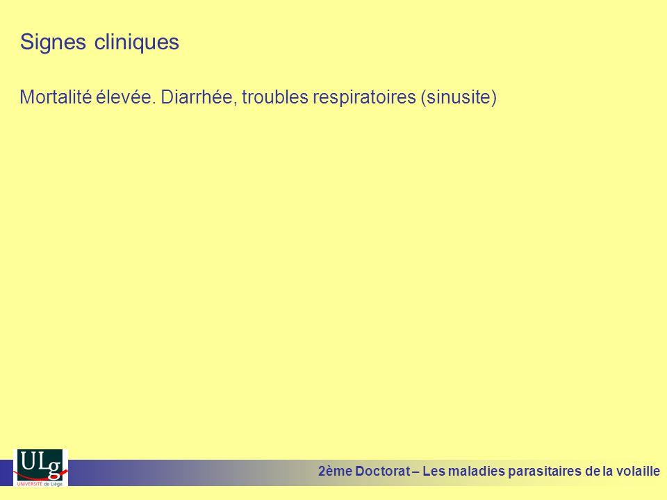 Signes cliniques Mortalité élevée. Diarrhée, troubles respiratoires (sinusite) 2ème Doctorat – Les maladies parasitaires de la volaille