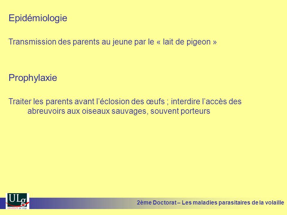 Epidémiologie Transmission des parents au jeune par le « lait de pigeon » Prophylaxie Traiter les parents avant l'éclosion des œufs ; interdire l'accè