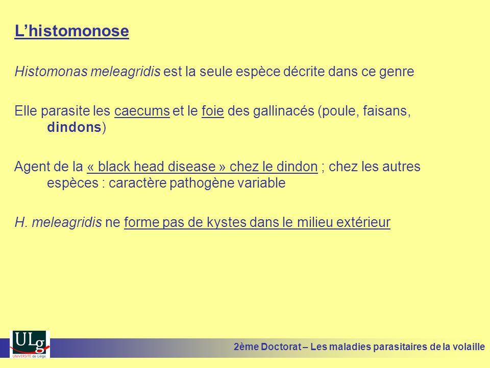 L'histomonose Histomonas meleagridis est la seule espèce décrite dans ce genre Elle parasite les caecums et le foie des gallinacés (poule, faisans, di