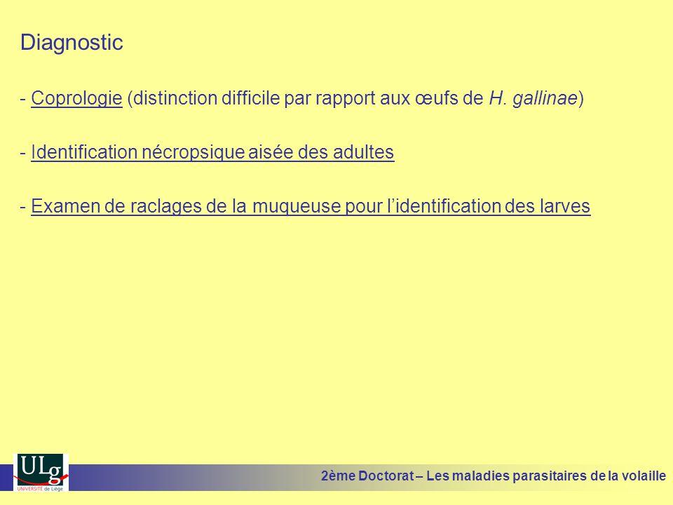 Diagnostic - Coprologie (distinction difficile par rapport aux œufs de H. gallinae) - Identification nécropsique aisée des adultes - Examen de raclage