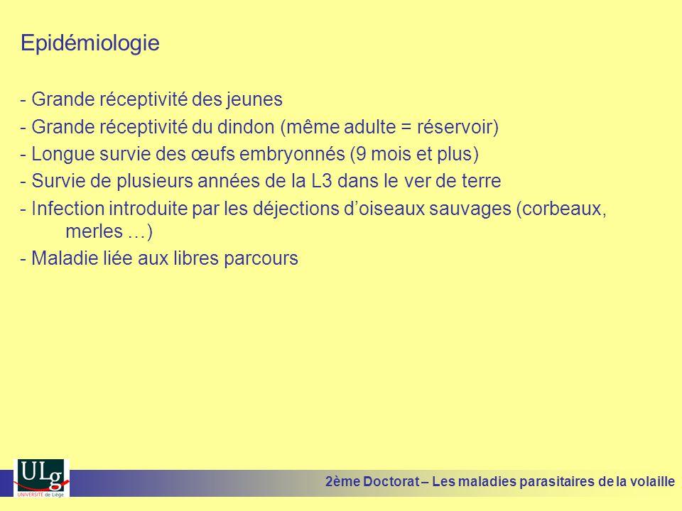 Epidémiologie - Grande réceptivité des jeunes - Grande réceptivité du dindon (même adulte = réservoir) - Longue survie des œufs embryonnés (9 mois et
