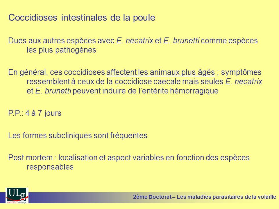 Coccidioses intestinales de la poule Dues aux autres espèces avec E. necatrix et E. brunetti comme espèces les plus pathogènes En général, ces coccidi