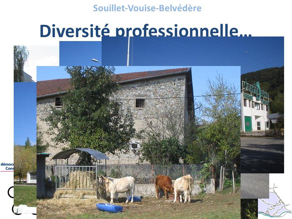 Souillet-Vouise-Belvédère Diversité professionnelle…