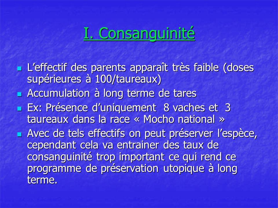 I. Consanguinité L'effectif des parents apparaît très faible (doses supérieures à 100/taureaux) L'effectif des parents apparaît très faible (doses sup