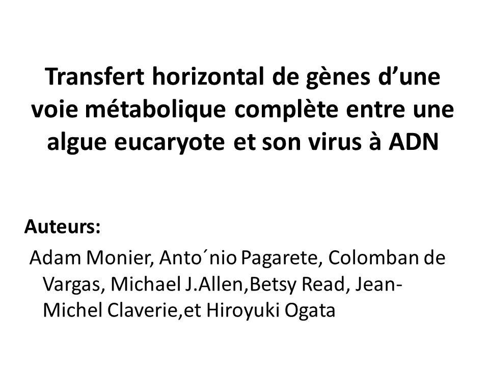 Transfert horizontal de gènes d'une voie métabolique complète entre une algue eucaryote et son virus à ADN Auteurs: Adam Monier, Anto´nio Pagarete, Colomban de Vargas, Michael J.Allen,Betsy Read, Jean- Michel Claverie,et Hiroyuki Ogata