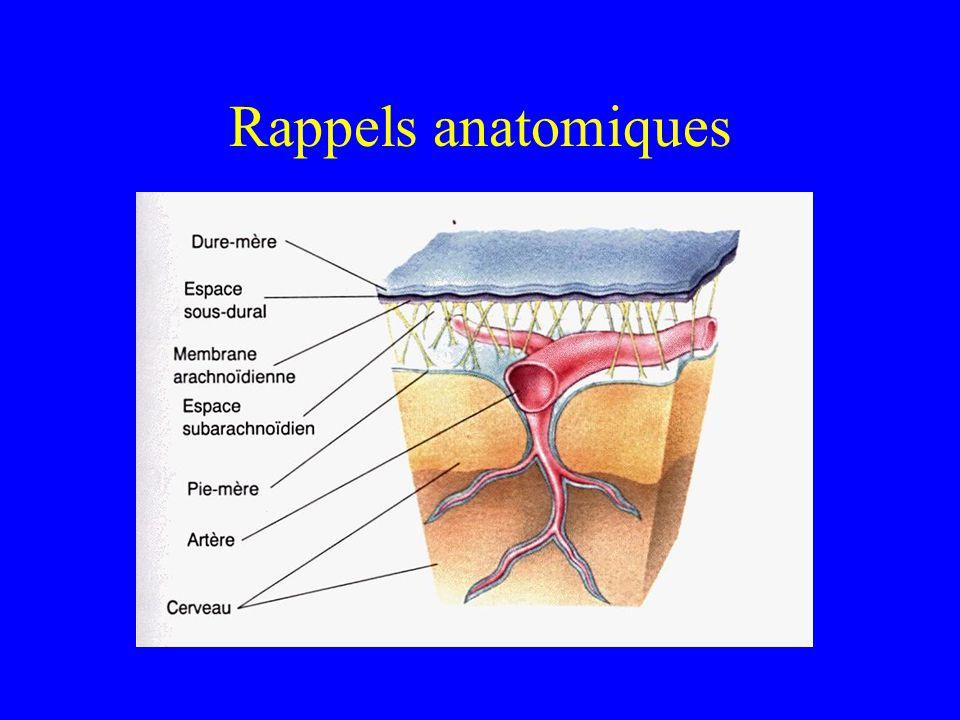Physiologie LCR sécrété par les plexus choroïdes ventriculaires à un taux de 0.35 ml/mn LCR résorbé au même taux par les villosités arachnoïdiennes