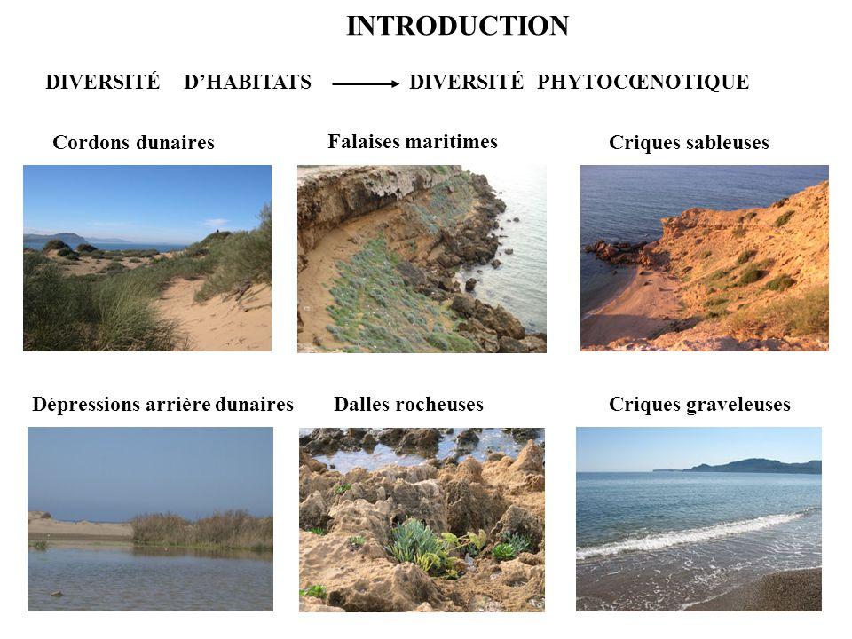 INTRODUCTION Cordons dunaires Dépressions arrière dunairesDalles rocheuses Falaises maritimes DIVERSITÉ D'HABITATS DIVERSITÉ PHYTOCŒNOTIQUE Criques sa