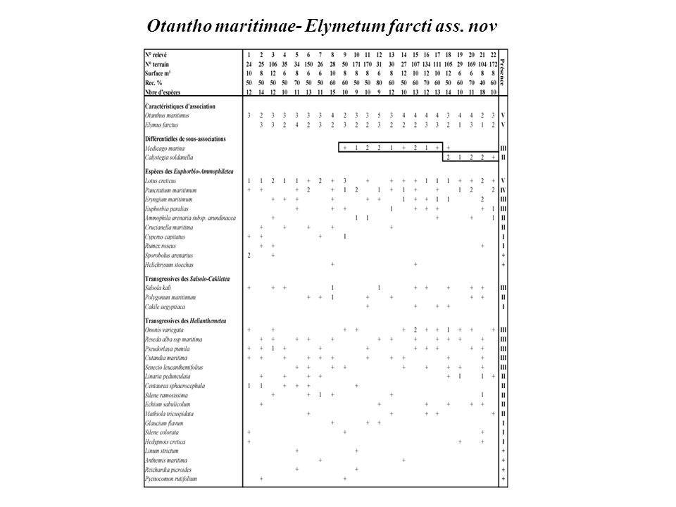 Ephedro fragili – Juniperetum macrocarpae J. M. & J. Géhu 1986