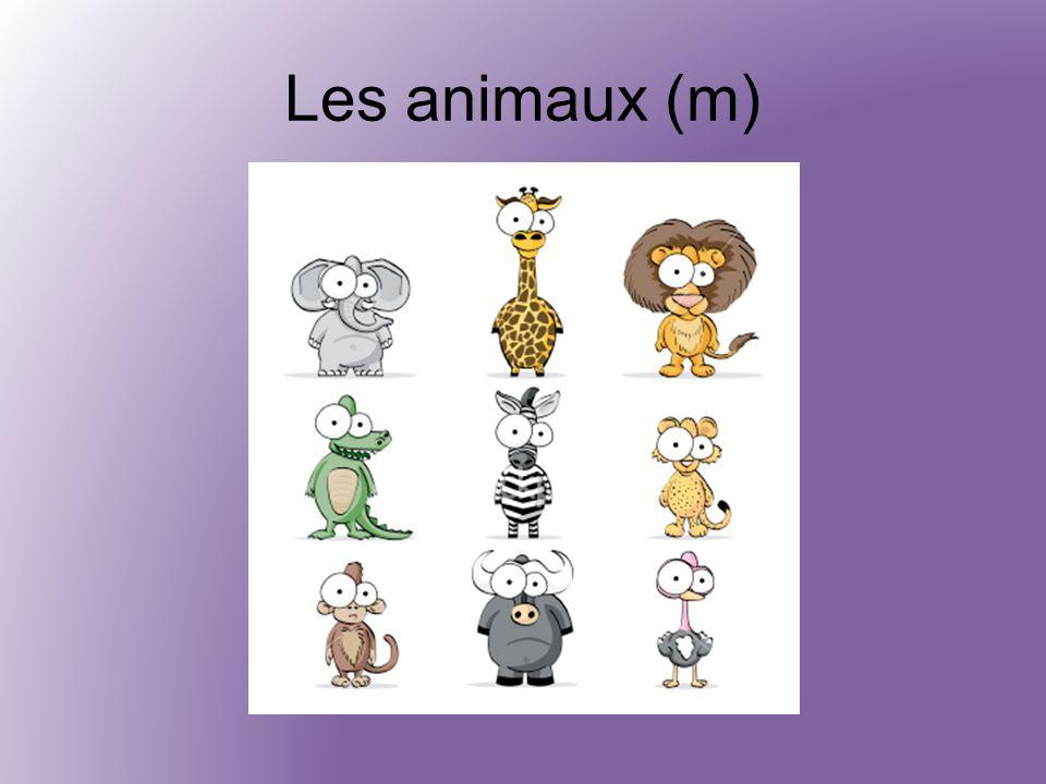 Les animaux (m)