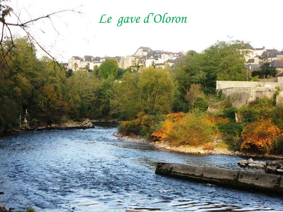 Moumour pont sur le Vert d'Arette