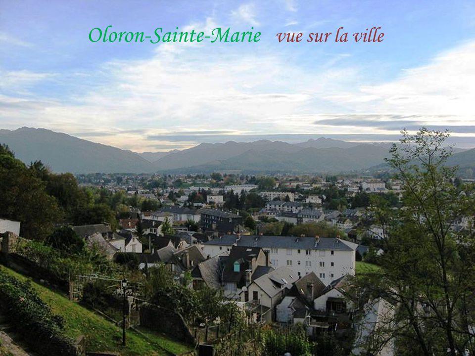 Le gave d'Oloron