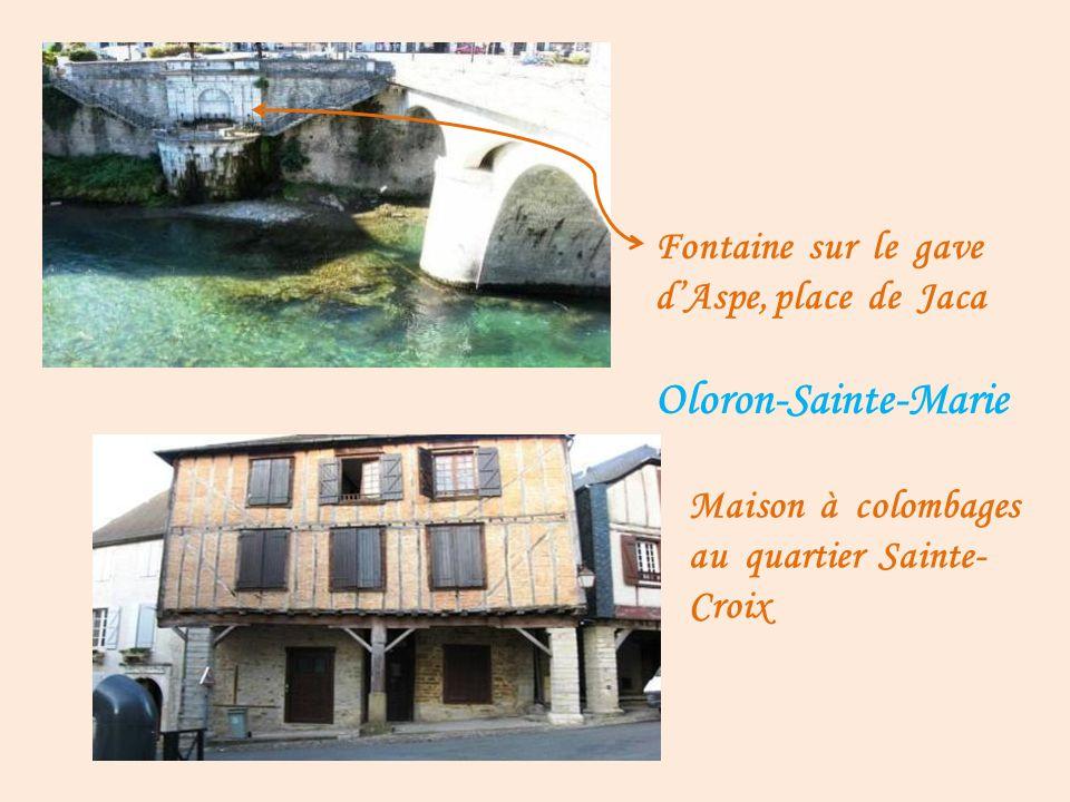 Oloron-Sainte-Marie vue sur la ville