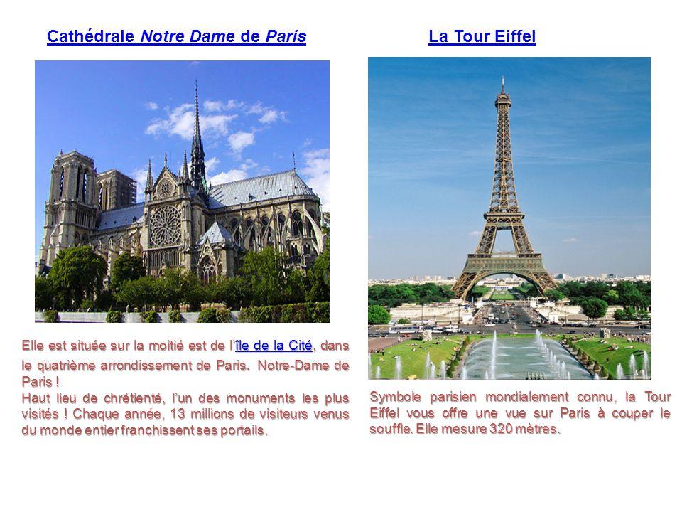 Elle est située sur la moitié est de l'île de la Cité, dans le quatrième arrondissement de Paris. Notre-Dame de Paris ! île de la Citéîle de la Cité H