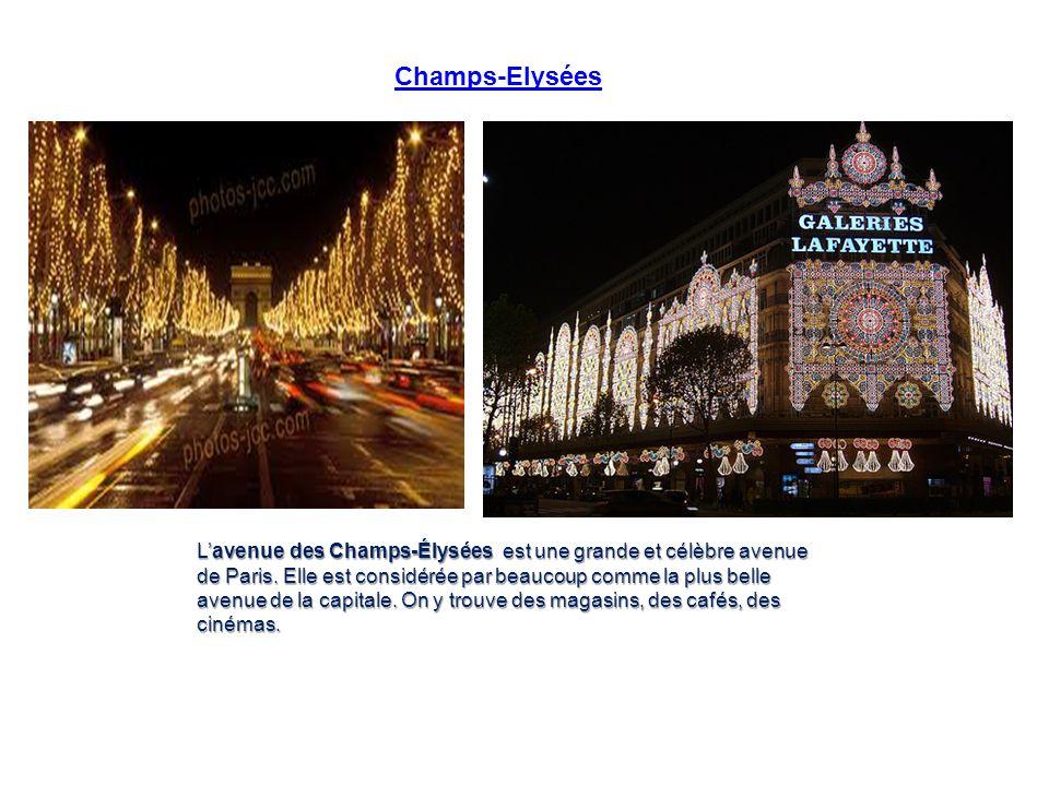 Champs-Elysées L'avenue des Champs-Élysées est une grande et célèbre avenue de Paris. Elle est considérée par beaucoup comme la plus belle avenue de l