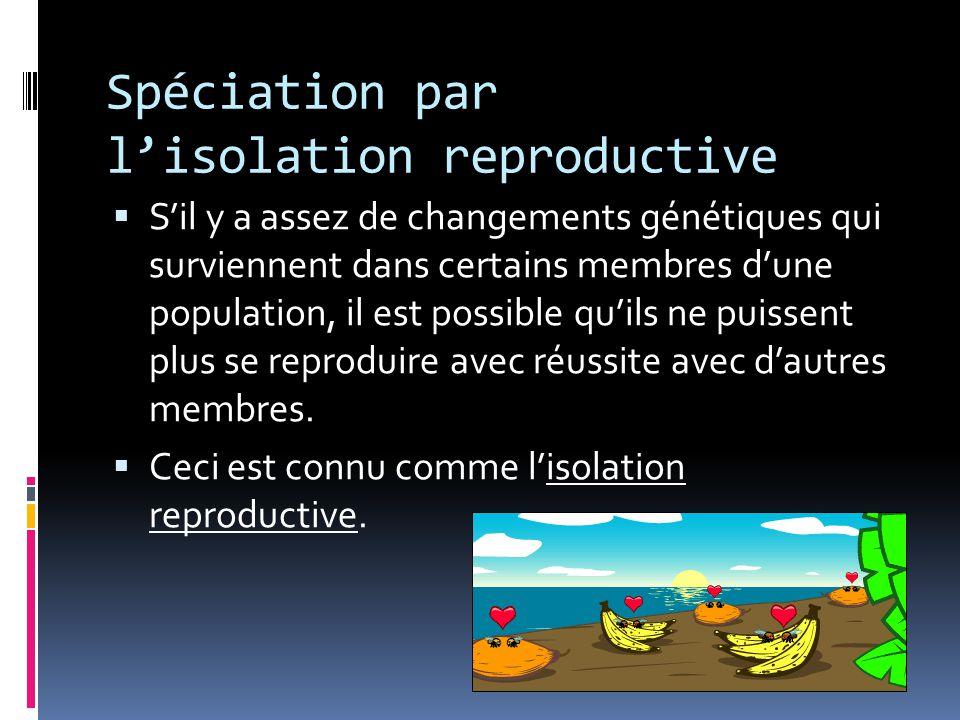 Spéciation par l'isolation reproductive  S'il y a assez de changements génétiques qui surviennent dans certains membres d'une population, il est possible qu'ils ne puissent plus se reproduire avec réussite avec d'autres membres.