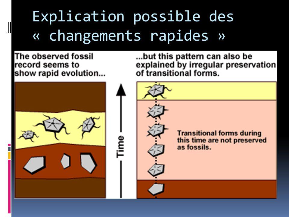Explication possible des « changements rapides »