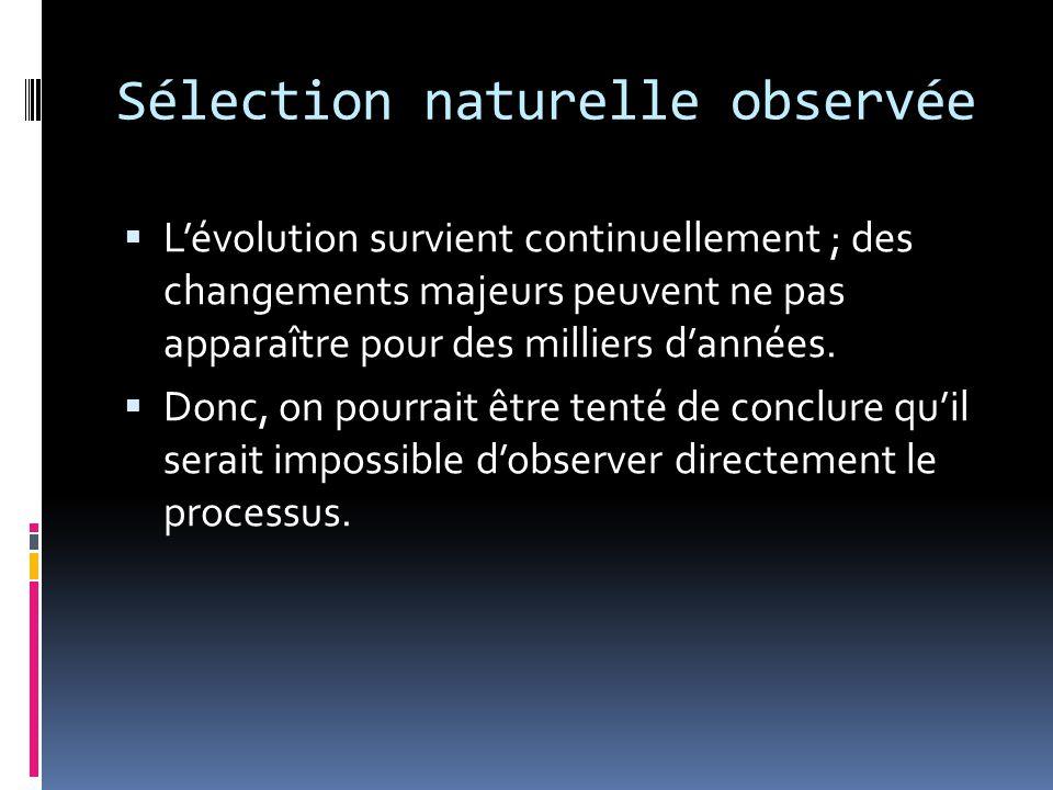 Sélection naturelle observée  L'évolution survient continuellement ; des changements majeurs peuvent ne pas apparaître pour des milliers d'années.