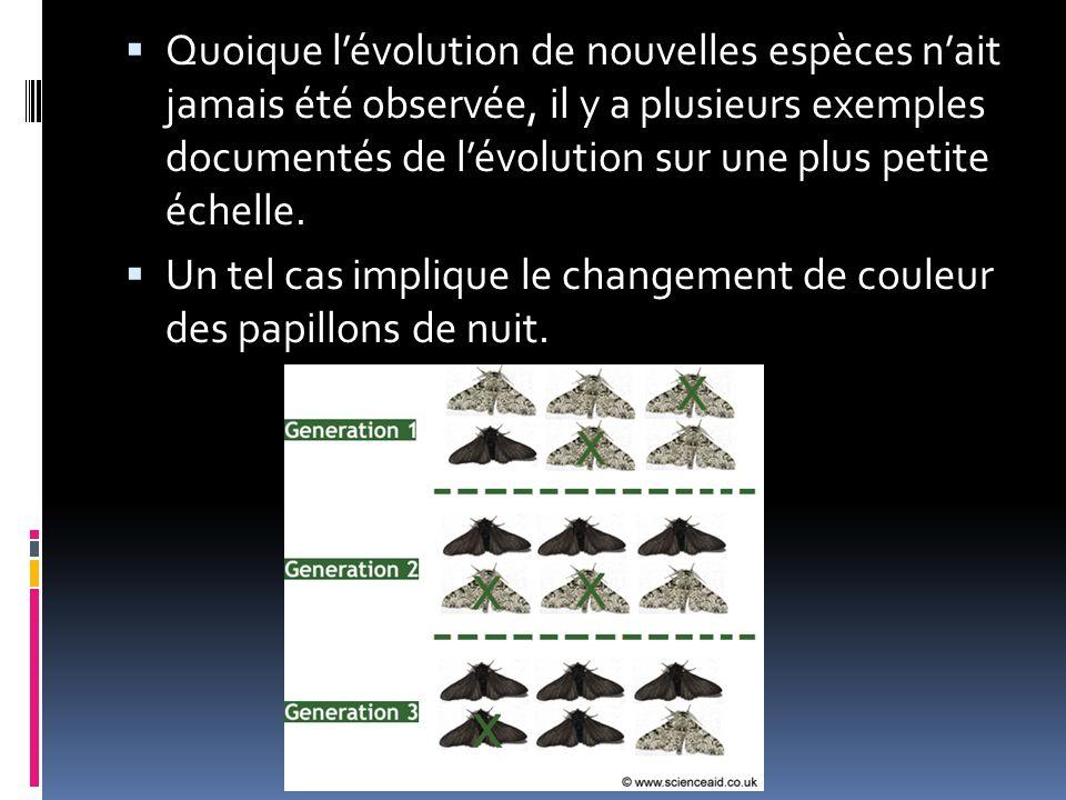  Quoique l'évolution de nouvelles espèces n'ait jamais été observée, il y a plusieurs exemples documentés de l'évolution sur une plus petite échelle.