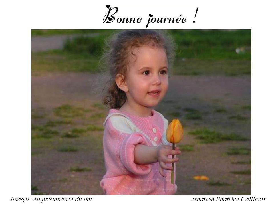 une amitié sans confiance c'est comme une fleur sans parfum