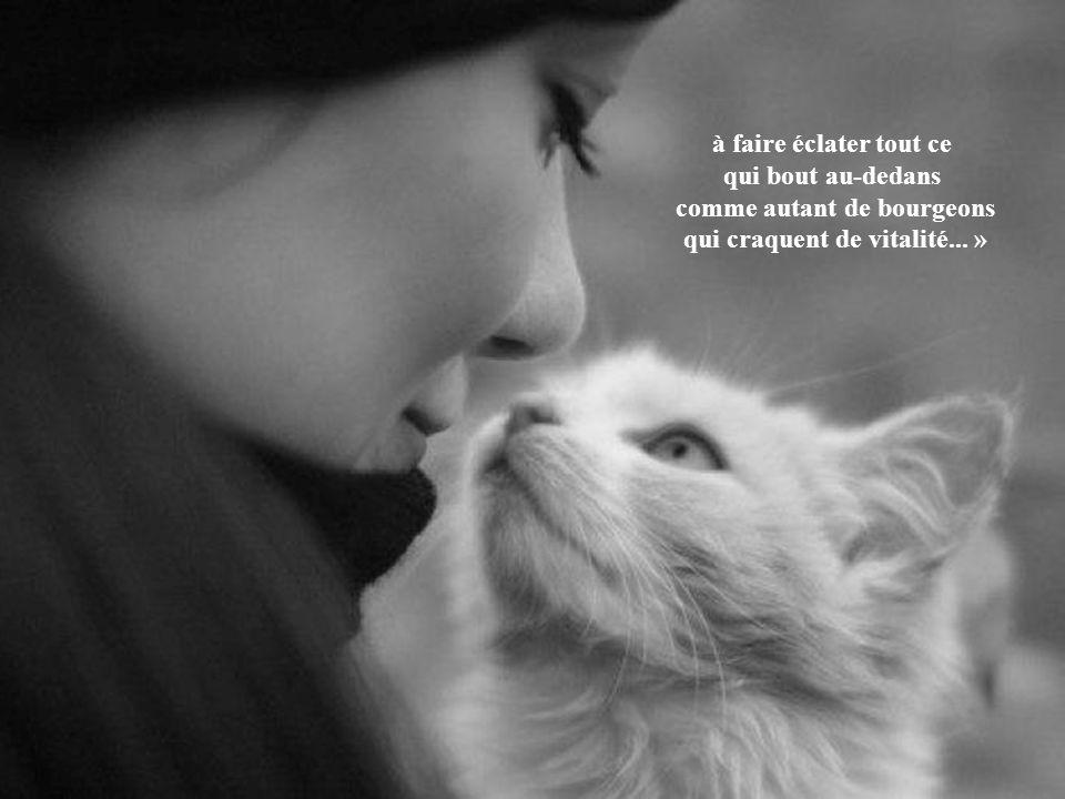 « L'amité, c'est d'aider l'autre à aller jusqu'au bout de lui-même ; à pousser jusqu'à l'extrême limite les possibilités de son âme et de son cœur ;