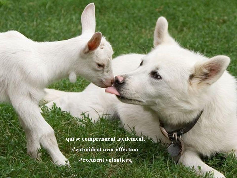 L'amitié, c'est la rencontre de deux âmes qui se connaissent bien,