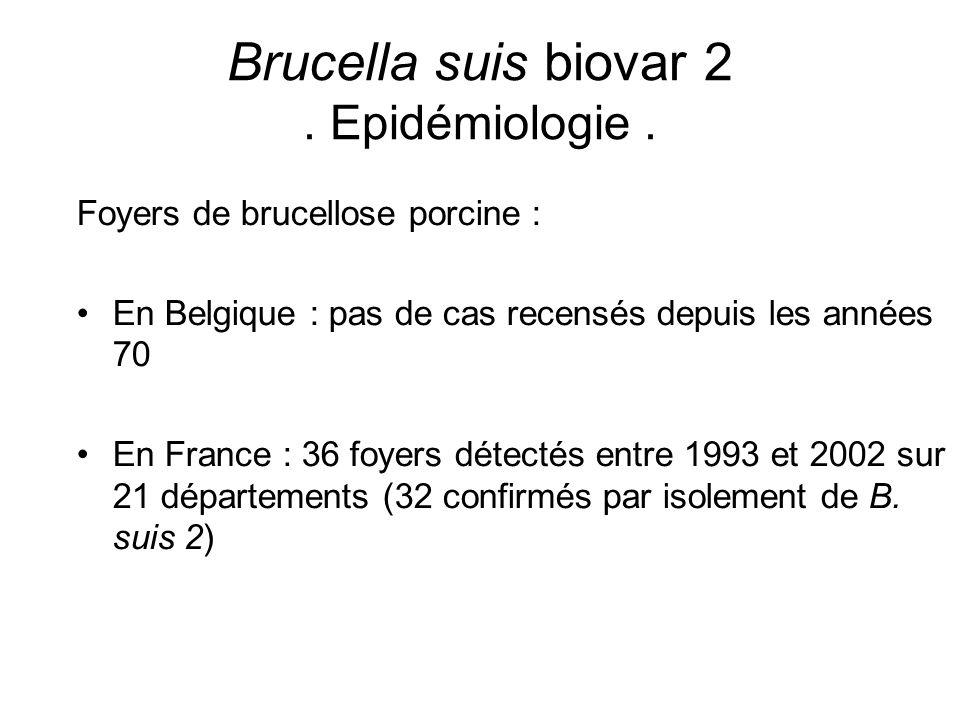 Foyers de brucellose porcine : En Belgique : pas de cas recensés depuis les années 70 En France : 36 foyers détectés entre 1993 et 2002 sur 21 départe