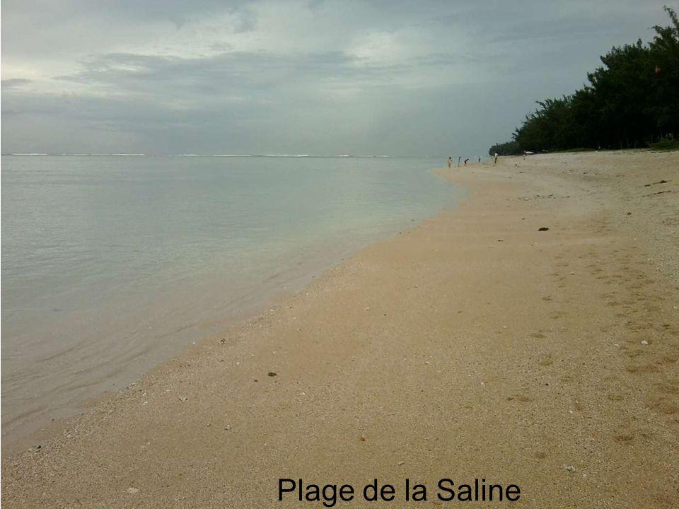 Hermitage vers La Saline