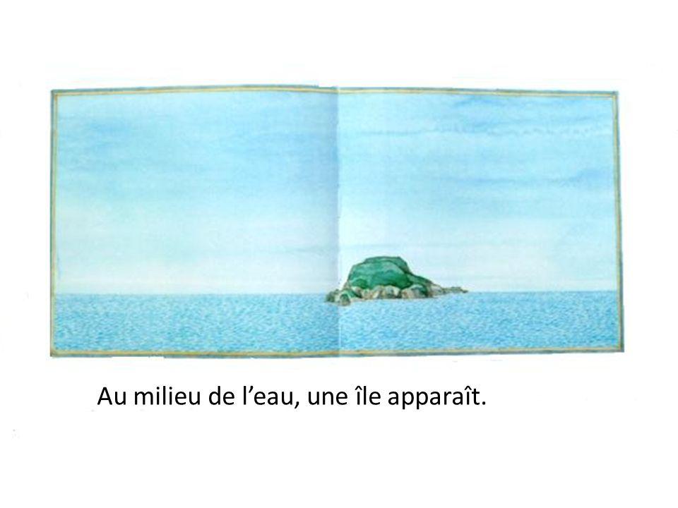 Au milieu de l'eau, une île apparaît.